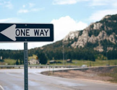 ¿Viajas o quieres viajar para encontrar respuestas?